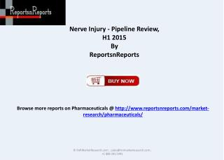 Nerve Injury Pipeline Review 2015