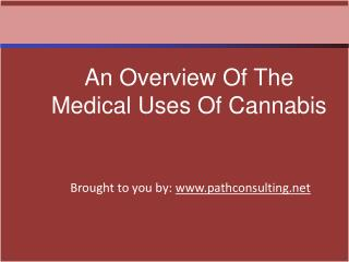 An Overview Of The Medical Uses Of Cannabis