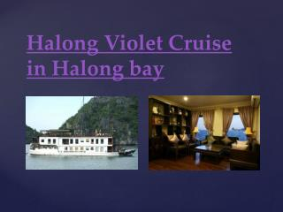 Halong Violet Cruise in Halong bay