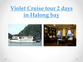 Halong Violet Cruise 2 days in Halong bay