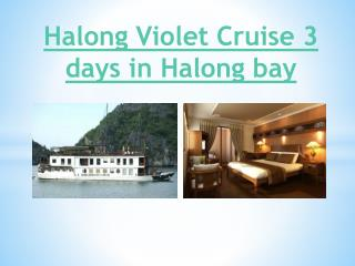 Halong Violet Cruise 3 days in Halong bay