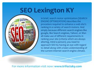 seo lexington ky