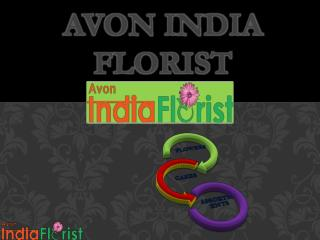 Avon India Florist