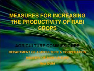 MEASURES FOR INCREASING THE PRODUCTIVITY OF RABI CROPS   AGRICULTURE COMMISSIONER DEPARTMENT OF AGRICULTURE  COOPERATION