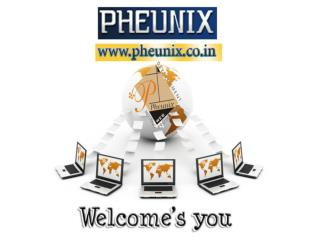 SEO Promotion company PHEUNIX