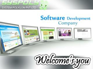 Software development outsourcing India | SYSPOLY