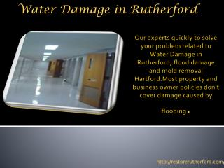 Water Damage in Rutherford