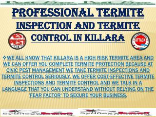 Professional Termite Inspection & Termite Control in Killara
