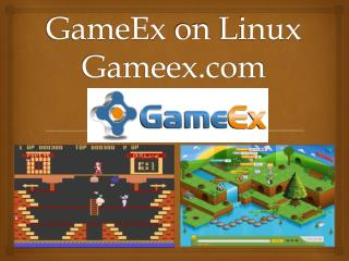 GameEx on Linux