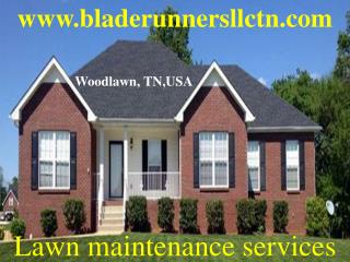 Lawn Care, Maintenance, Tree Removal, Spring Clean and Lands