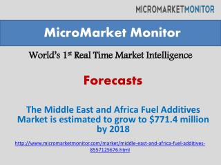 The Middle East and Africa Fuel Additives Market