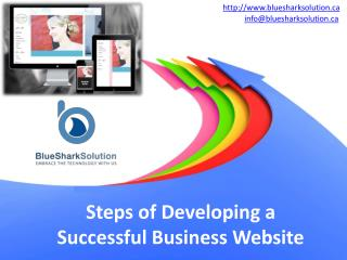 Steps of developing a successful business website: