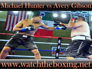 Michael Hunter vs Avery Gibson