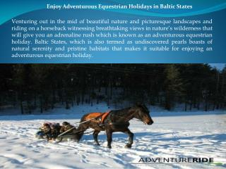 Enjoy Adventurous Equestrian Holidays in Baltic States