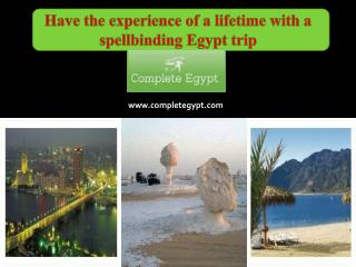 Have the experience of a lifetime with a spellbinding Egypt