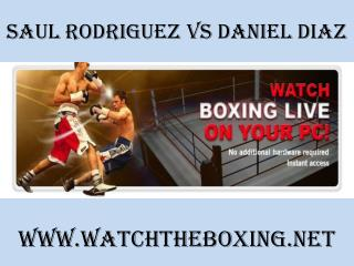watch Saul Rodriguez vs Daniel Diaz 7 February 2015 online
