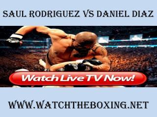 watch Saul Rodriguez vs Daniel Diaz 7 February 2015