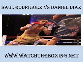 watch Saul Rodriguez vs Daniel Diaz
