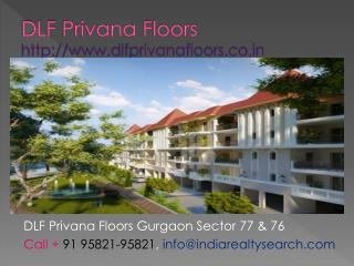 New DLF Privana Floors