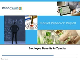 Zambian Employee Benefits - Reports Cue