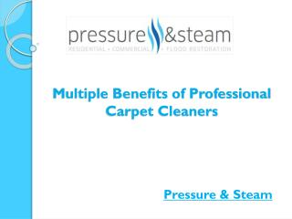 Multiple Benefits of Professional Carpet Cleaners