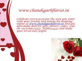 Flowers to Chandigarh