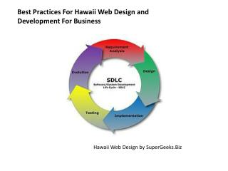 Best Practices For Hawaii Web Design and Development For Bus