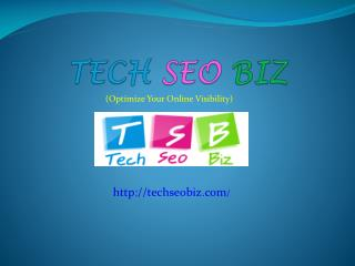 Top SEO Company of India
