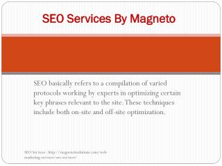 SEO services by Magneto IT solutions