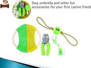 Dog umbrella and other fun accessories for your first canine