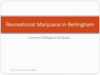 Recreational Marijuana in Bellingham
