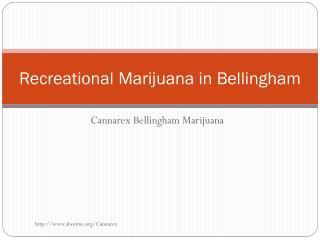 Recreational Marijuana in Bellingham