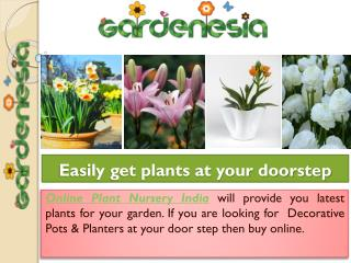 Garden Plants and Products Buy Easily at Gardenesia