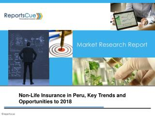 Non-Life Insurance Market in Peru: Size, Trends, Industry, A
