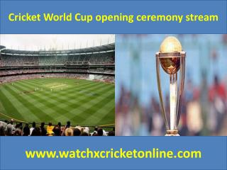 Cricket World Cup  stream