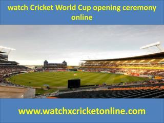 watch Cricket World Cup  online