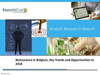 Reinsurance Market in Belgium: Size, Key Trends, Industry, D