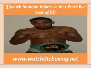 watch boxing Brandon Adams vs Alex Perez live stream
