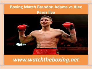 how to watch Brandon Adams vs Alex Perez live boxing