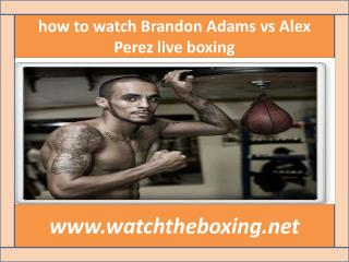 where can I watch Brandon Adams vs Alex Perez live boxing