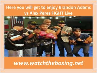 live Brandon Adams vs Alex Perez streaming >>>>>>>