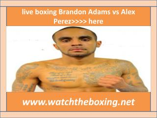 live boxing fight Brandon Adams vs Alex Perez 13 february 20