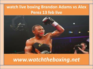 watch Brandon Adams vs Alex Perez live streaming >>>>>.