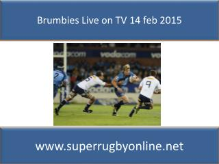 watch Bulls vs Stormers live