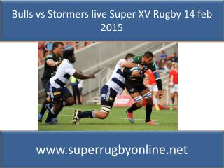 how to watch Bulls vs Stormers live Super rugby