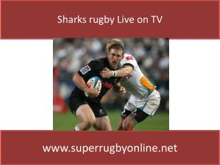 watch Sharks vs Cheetahs live Super rugby match