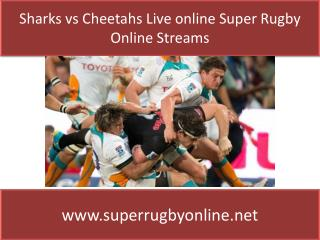 Watch Sharks vs Cheetahs Live Stream Rugby