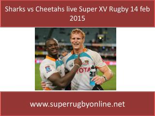 Sharks vs Cheetahs live Coverage on 14 feb 2015