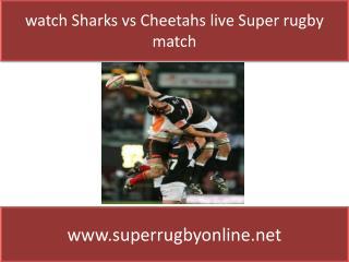 watch Sharks vs Cheetahs online stream