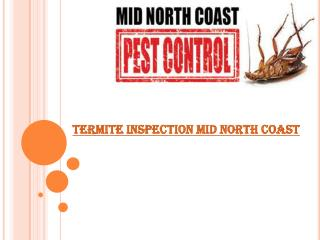 Termite inspection mid north coast